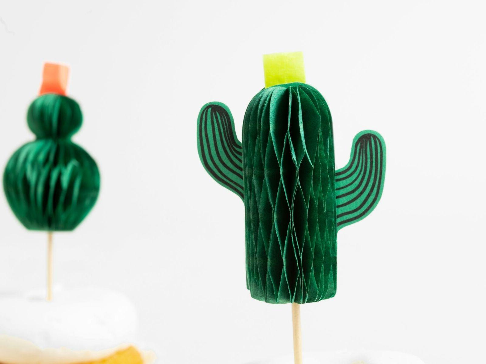 Meri Cute Cactus Cupcake