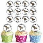 Dinosaur T Rex 24 Personalised Pre-Cut Edible Cupcake Topper
