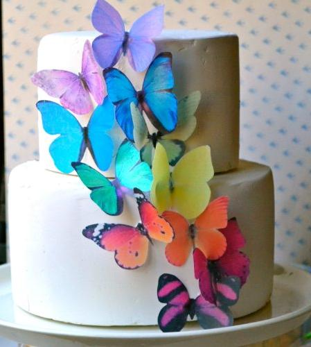 edible butterflies