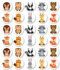 Woodland Babies Edible Cupcake Cake Toppers Decoration Baby