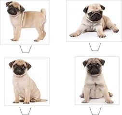Novelty Cute Pug Puppy Mix 12 Edible Stand Up wafer paper ca