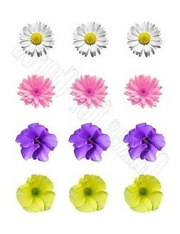 Spring Flowers edible party cupcake toppers decoration frost