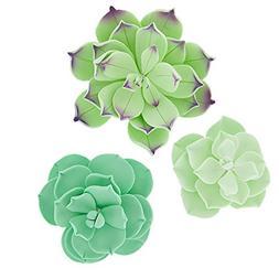 Succulents Set, 3 sizes, 9 Count by Chef Alan Tetreault