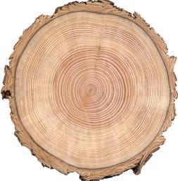 Wood Tree Ring Birthday ~ Frosting Sheet Cake Topper ~ Edibl